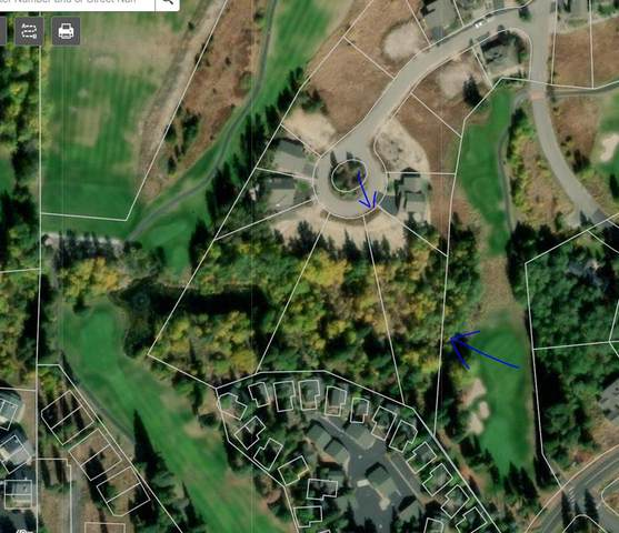Lot 46 Mountain Cove, McCall, ID 83638 (MLS #533002) :: Scott Swan Real Estate Group