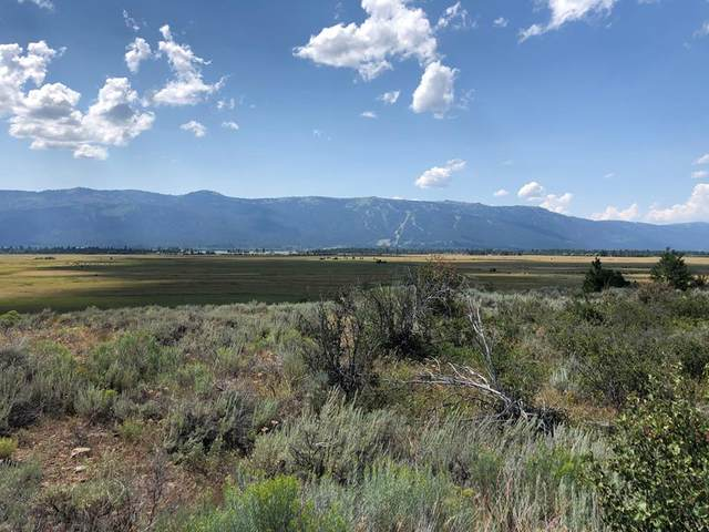 12583 Takeuchi Drive, Donnelly, ID 83615 (MLS #533037) :: Boise River Realty