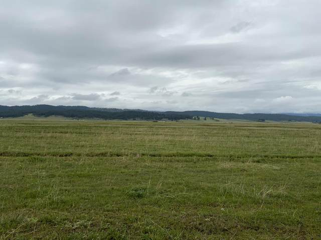 TBD Farm To Market Road, Donnelly, ID 83615 (MLS #533096) :: Boise River Realty