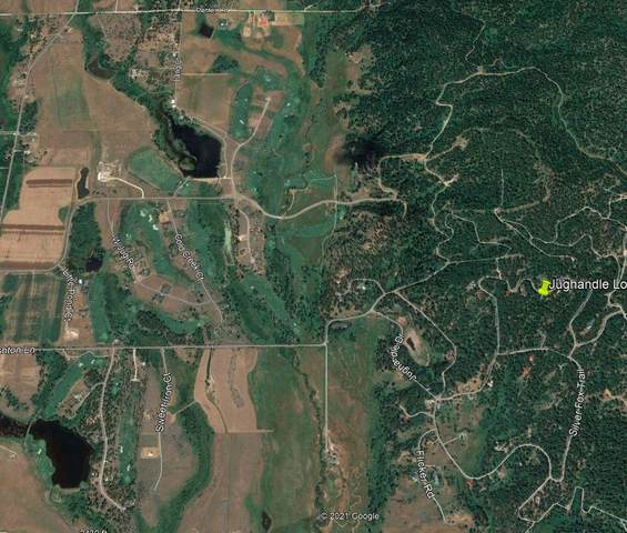 111 Jughandle Drive, McCall, ID 83638 (MLS #533102) :: Boise River Realty