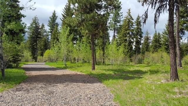 TBD Sundance Drive, McCall, ID 83638 (MLS #533110) :: Boise River Realty