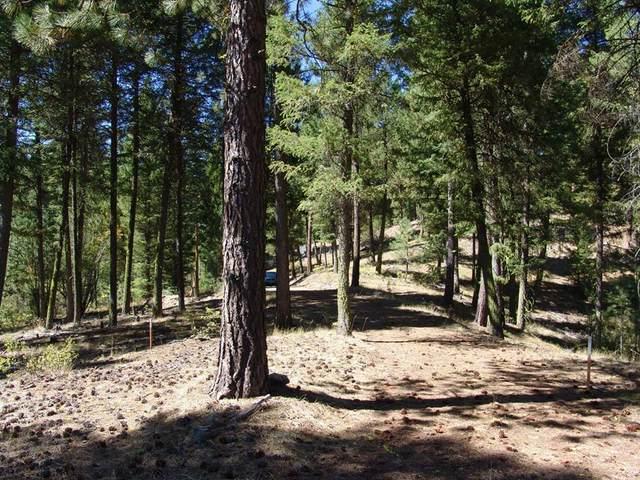 40 Rehn Loop, Cascade, ID 83611 (MLS #533169) :: Scott Swan Real Estate Group