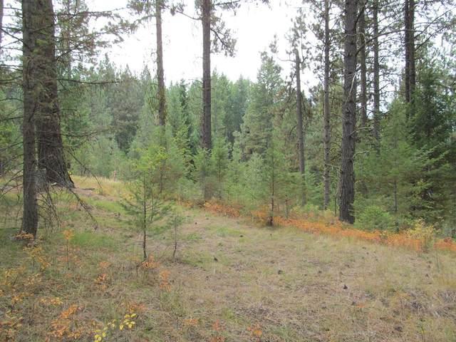 68 Panorama Drive, Cascade, ID 83611 (MLS #533214) :: Scott Swan Real Estate Group