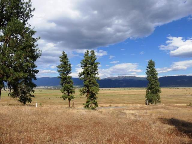 Lot 24 Timber Ridge Drive, New Meadows, ID 83654 (MLS #533245) :: Boise River Realty