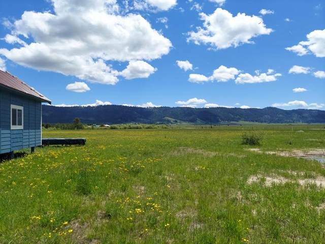 10184 Packsaddle Road, Cascade, ID 83611 (MLS #533254) :: Boise River Realty
