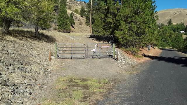TBD S Ranny Road, Pollock, ID 83547 (MLS #533283) :: Boise River Realty