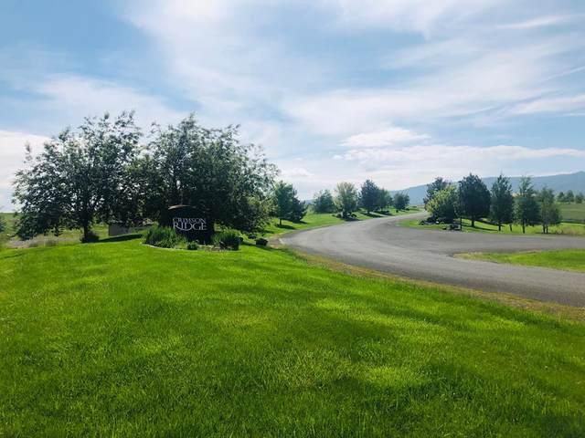 Lot 2A Ridgeview Drive, Grangeville, ID 83530 (MLS #533292) :: Boise River Realty