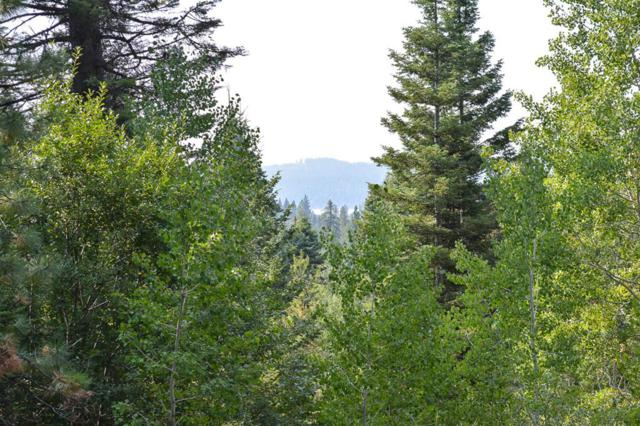 Lot 82 Majestic View Drive, McCall, ID 83638 (MLS #526876) :: Juniper Realty Group
