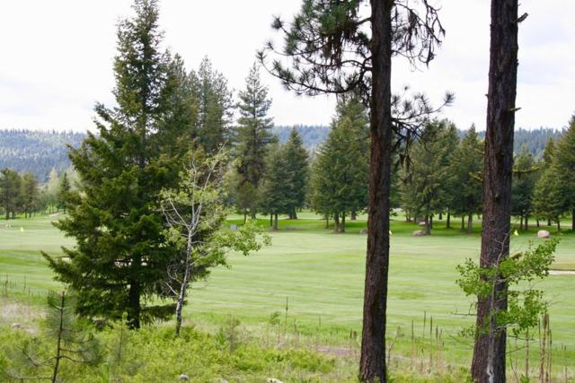 TBD Whitetail Drive, McCall, ID 83638 (MLS #527230) :: Juniper Realty Group