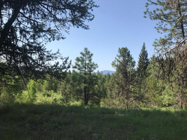 33 Fawnlilly Drive, McCall, ID 83638 (MLS #527282) :: Juniper Realty Group