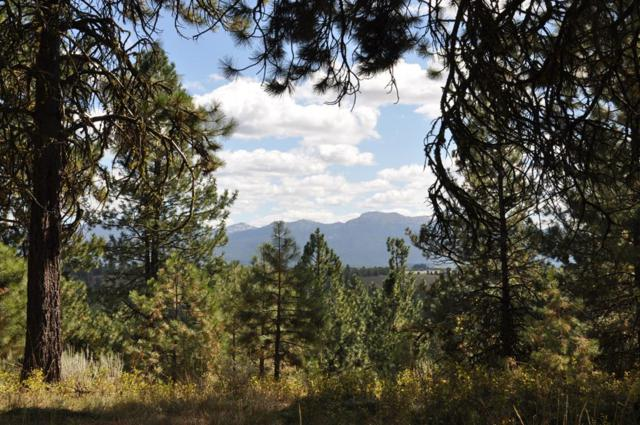 TBD North Wood Court, McCall, ID 83638 (MLS #527739) :: Juniper Realty Group
