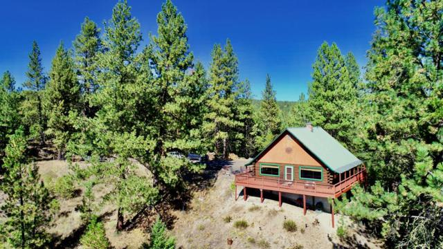 437 Warm Lake Road, Cascade, ID 83611 (MLS #527889) :: Juniper Realty Group