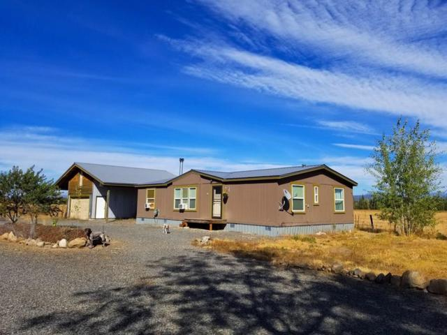 180 Tamarack Falls Road, Donnelly, ID 83615 (MLS #527991) :: Juniper Realty Group