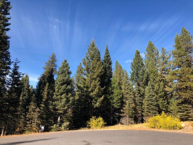 Lot 3 Forest Trails Court, McCall, ID 83638 (MLS #528063) :: Juniper Realty Group