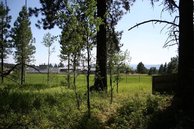 618 Woodlands Drive, McCall, ID 83638 (MLS #528961) :: Adam Alexander