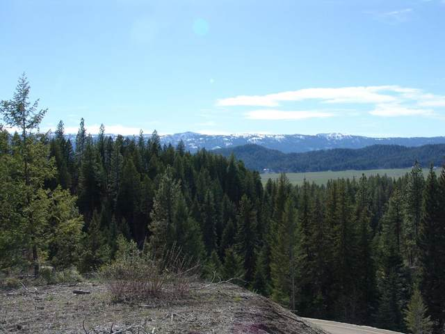 L5 B4 Tito Trail, Cascade, ID 83611 (MLS #530111) :: Adam Alexander