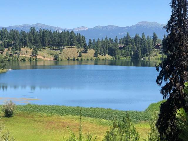 TBD Blackhawk Lake Drive, McCall, ID 83638 (MLS #530876) :: Boise River Realty