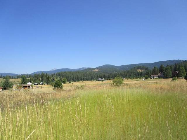 TBD Osprey Circle, New Meadows, ID 83654 (MLS #531286) :: Boise River Realty