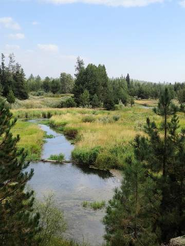 TBD Sawtooth Court, McCall, ID 83638 (MLS #531287) :: Boise River Realty