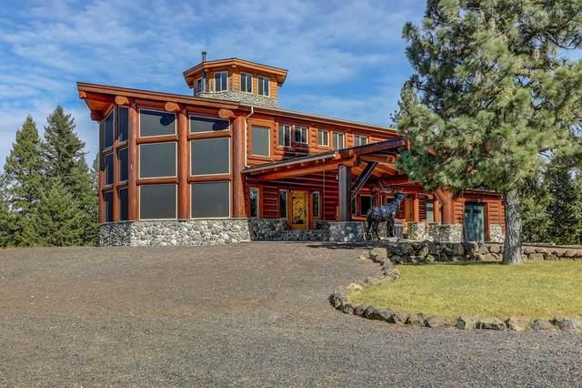 3618 Tamarack View Drive, New Meadows, ID 83654 (MLS #531559) :: Boise River Realty