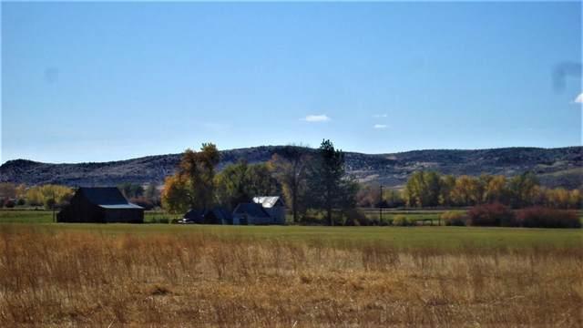 2250 Moritz Lane, Indian Valley, ID 83632 (MLS #531584) :: Silvercreek Realty Group