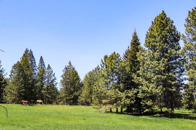2141 Old White Bird Hill Road, Grangeville, ID 83530 (MLS #531979) :: Boise River Realty