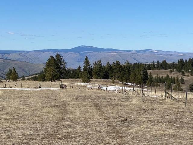 36 Pilgrim Ridge Road, White Bird, ID 83554 (MLS #532075) :: Adam Alexander
