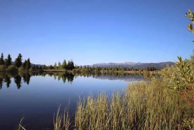 238 Rawhide Loop, McCall, ID 83638 (MLS #532143) :: Boise River Realty
