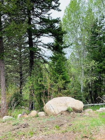 LOT 5 Majestic View Drive, McCall, ID 83638 (MLS #532304) :: Scott Swan Real Estate Group