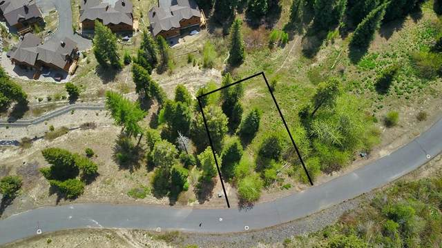 33 Veil Cave Court, Donnelly, ID 83615 (MLS #532526) :: Scott Swan Real Estate Group