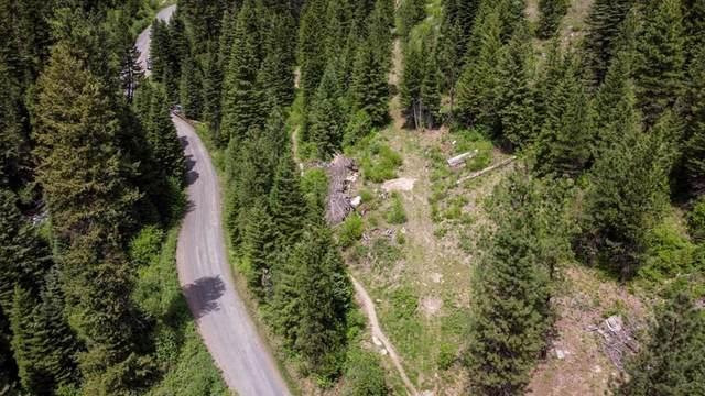 TBD Last Chance Road, New Meadows, ID 83654 (MLS #532597) :: Silvercreek Realty Group
