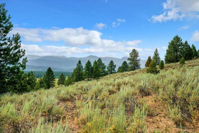 80 Alpha View Place, Cascade, ID 83611 (MLS #532851) :: Boise River Realty