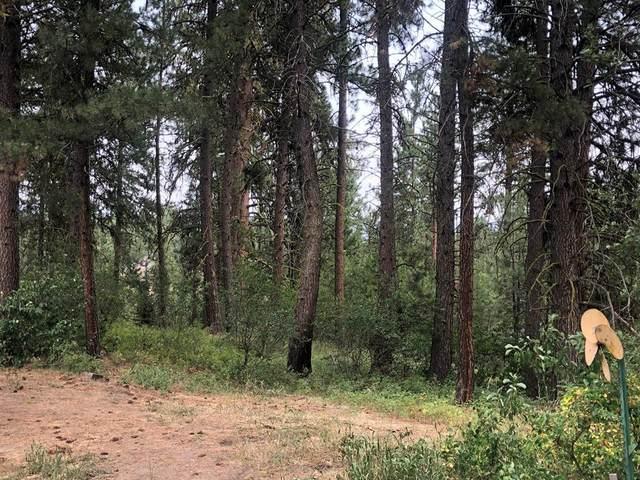 L17 Birdie Drive, Cascade, ID 83611 (MLS #532873) :: Scott Swan Real Estate Group