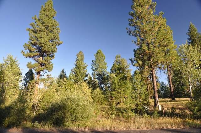 77 Sundance Drive, McCall, ID 83638 (MLS #533144) :: Boise River Realty