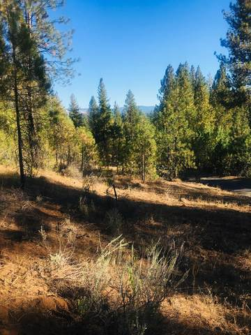 TBD Kimberland Drive, New Meadows, ID 83654 (MLS #533165) :: Boise River Realty