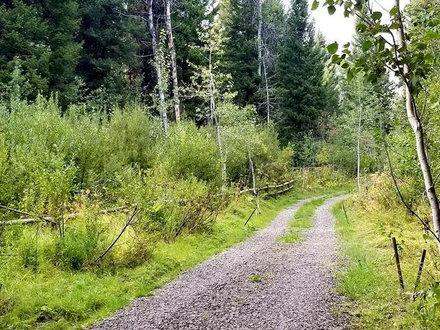 TBD None, McCall, ID 83638 (MLS #533234) :: Boise River Realty