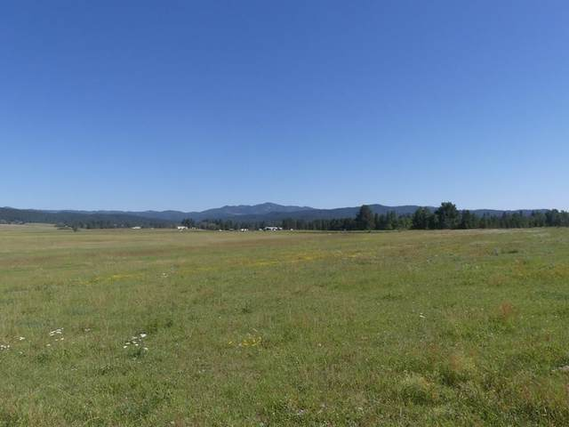 TBD-5 Gold Fork Road, Donnelly, ID 83615 (MLS #533304) :: Boise River Realty