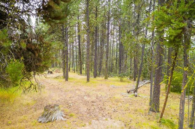 TBD Huckleberry Place, McCall, ID 83638 (MLS #529549) :: Boise River Realty
