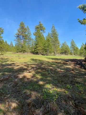 00 Harrington Place, McCall, ID 83638 (MLS #532356) :: Boise River Realty