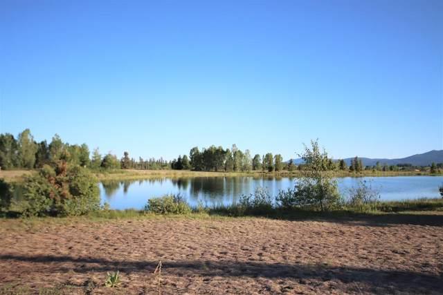 221 Rawhide Loop, McCall, ID 83638 (MLS #531810) :: Boise River Realty