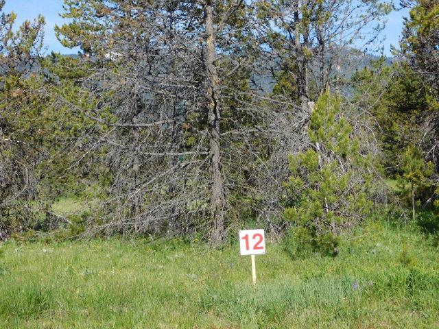 12935 Siscra Road, Donnelly, ID 83615 (MLS #414450) :: Juniper Realty Group