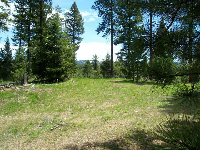 L21B2 Coit Drive, Cascade, ID 83611 (MLS #517577) :: Juniper Realty Group