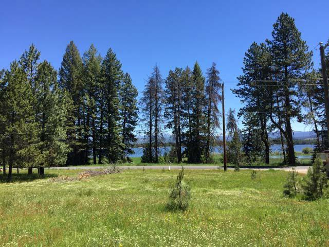 2175 West Mountain Road, Donnelly, ID 83615 (MLS #517604) :: Juniper Realty Group