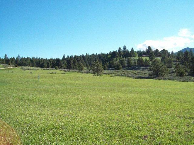 10328 Gamann Drive, Cascade, ID 83611 (MLS #520866) :: Juniper Realty Group
