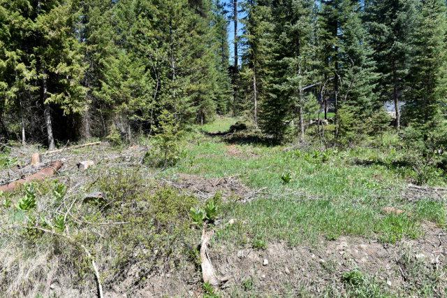 319 Burns Road, McCall, ID 83638 (MLS #521305) :: Juniper Realty Group