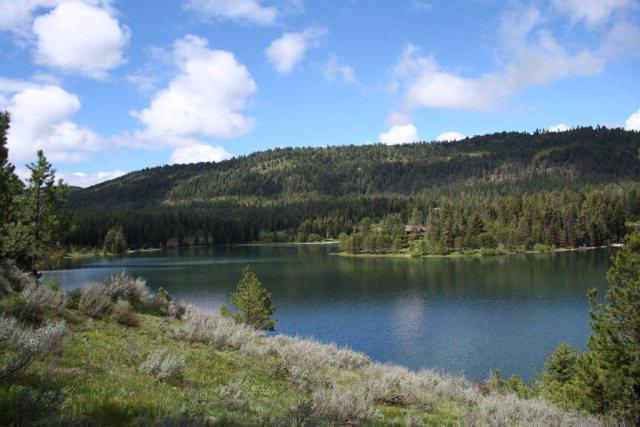 Lot 2 Reserve Court, McCall, ID 83638 (MLS #523498) :: Juniper Realty Group