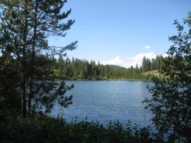 Lot 53 Loon Point Court, McCall, ID 83638 (MLS #523907) :: Juniper Realty Group