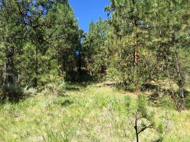 12 Sunset Loop, Cascade, ID 83611 (MLS #524030) :: Juniper Realty Group