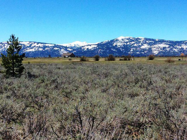 Lot 8 Elk Haven Way, McCall, ID 83638 (MLS #524552) :: Juniper Realty Group