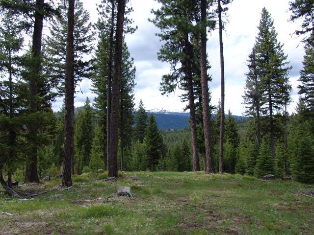 214 Tripod View Drive, Smith's Ferry, ID 83611 (MLS #524914) :: Juniper Realty Group
